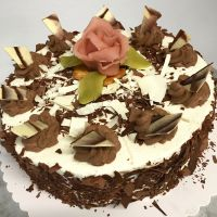 Torte-web